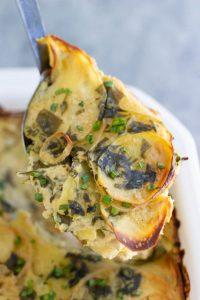 Scalloped Potatoes Florentine
